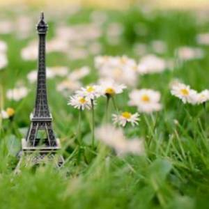 Our Green Paris Package